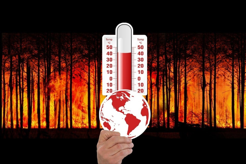 Image result for hot climate